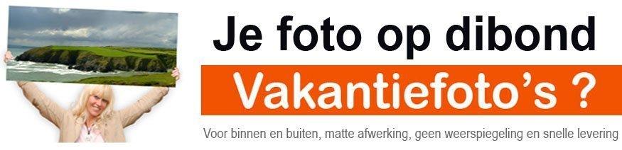 foto's bestellen-dibond-forex-canvas-smartphone
