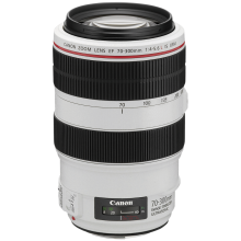 Canon EF 70-300/4.0-5.6L IS USM