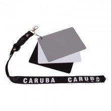 Caruba Digital grijskaart DGC-2